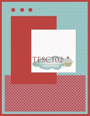 TESC102