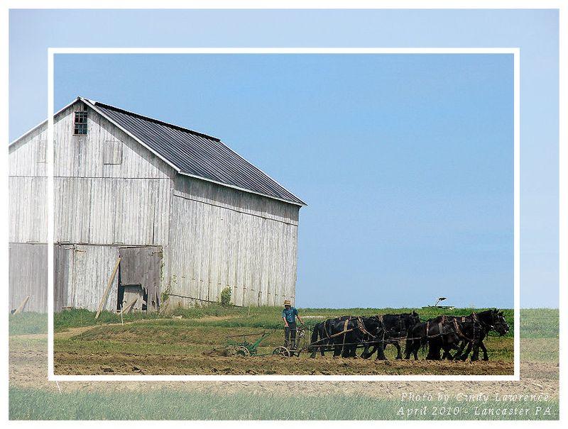 Lancaster PA Farm 2 - OHS