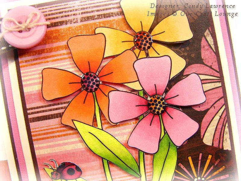 Pretty Petals 1 Close-Up - OHS