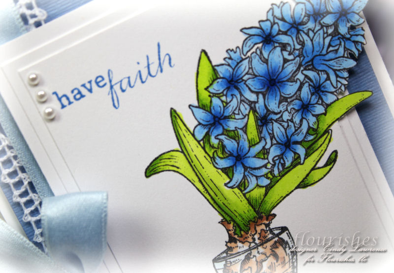 Hello Hyacinth 1 Close Up - OHS