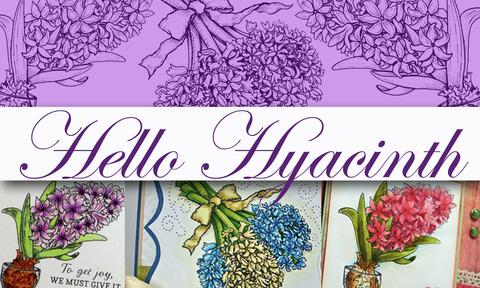 Hello+Hyacinth+Graphic