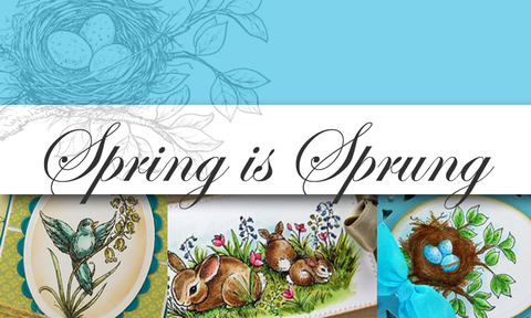 Spring+is+Sprung+Graphic