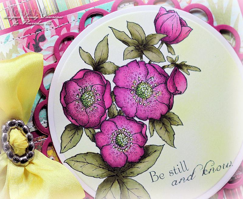 Lenten Rose 2 Close Up - OHS