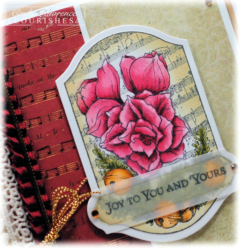 Petals and Peace 1 Close Up - OHS