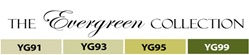 Copic Evergreen