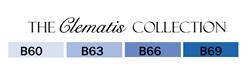 Copic Clematis
