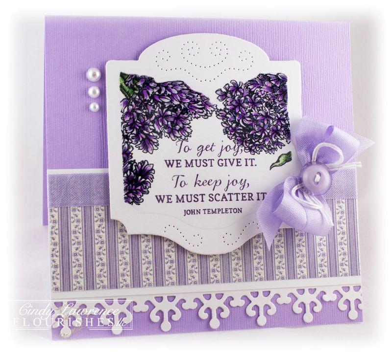 Hello-Hyacinth-2---OHS