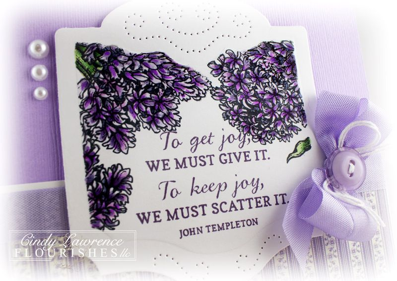 Hello-Hyacinth-2-Close-Up---OHS