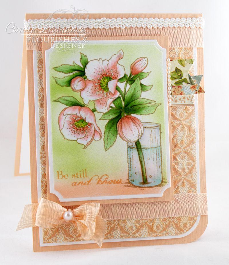 Lenten-Rose-6---OHS