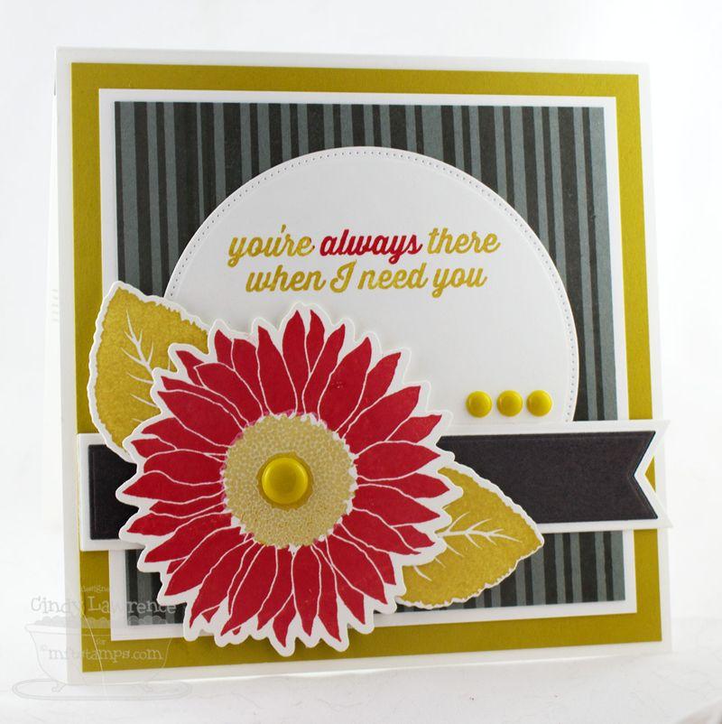 Splendid-Sunflowers-3---OHS