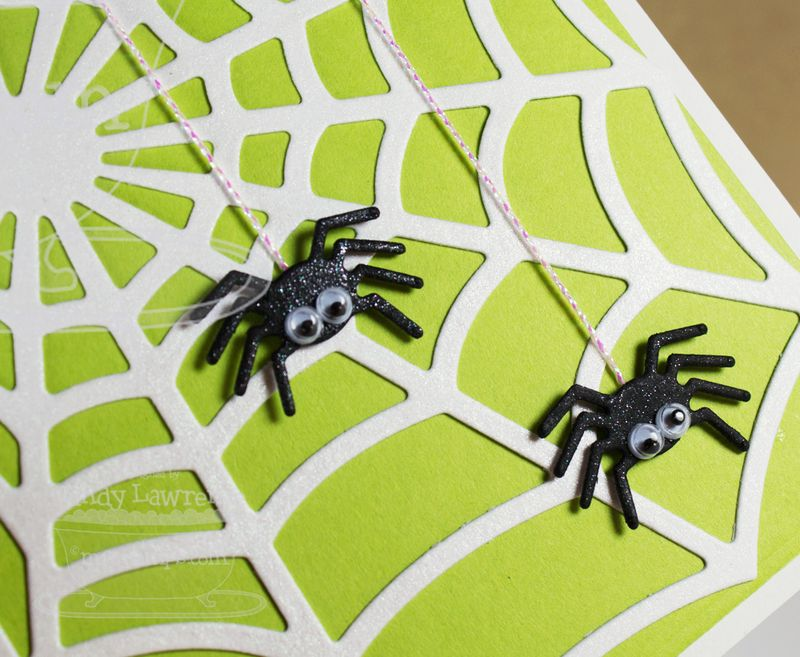 Spider-Web-Die-namics-1-Close-Up---OHS