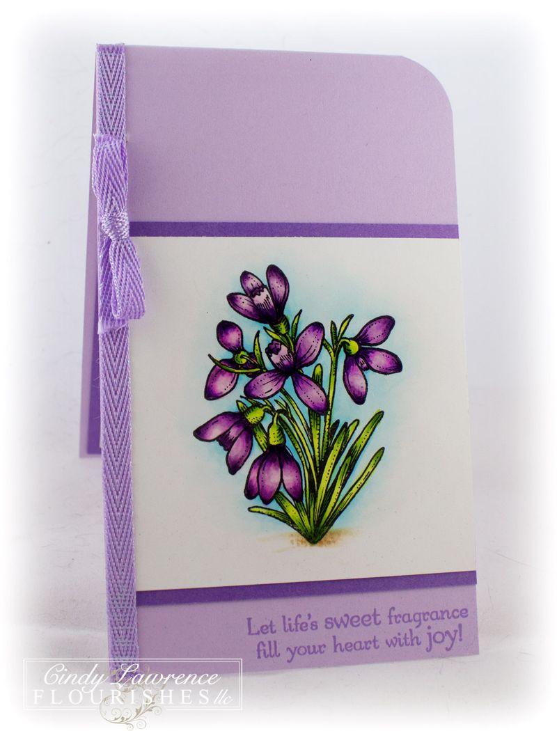 Botanical-Bookplates-Vol-1-3---OHS