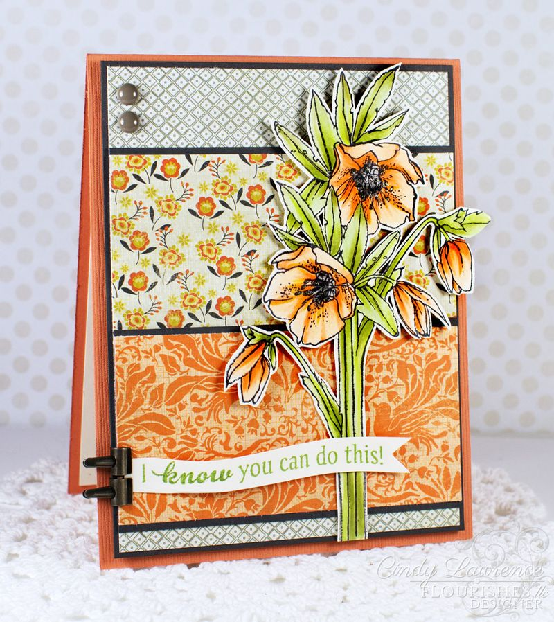 Always-Blooming-3---OHS