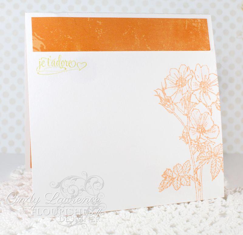 Wild-Roses-3-Inside---OHS