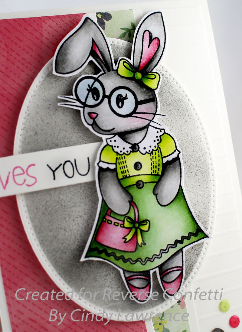 Quirky-Cuties-Bebe-Bunny-1-Close-Up---OHS
