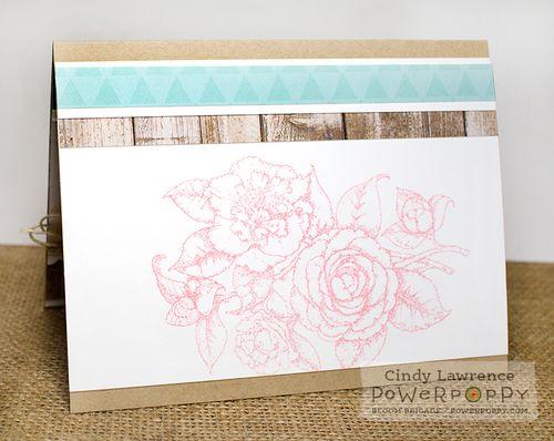 Simply-Camellias-1-Inside---OHS