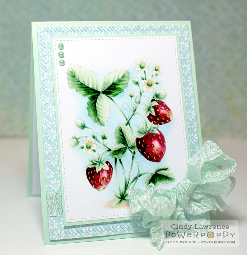 Juicy-Strawberries-1---OHS
