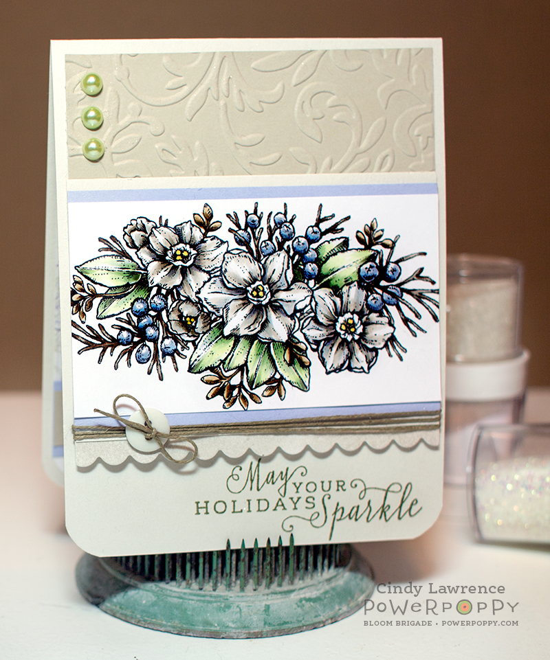 Glistening-Paperwhites-1---OHS