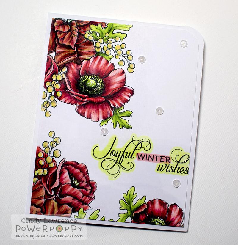 Winter Wonderland Angled - OHS