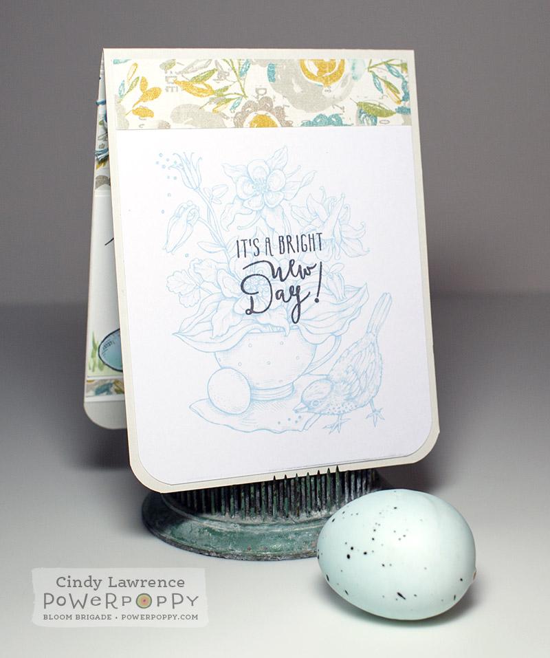 Robin Egg Inside - OHS