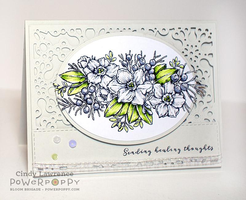 Glistening Paperwhites - OHS