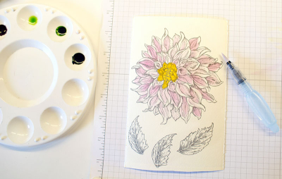 Dahlia Coloring 3 - OHS