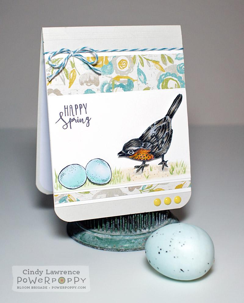 Robin Egg - OHS