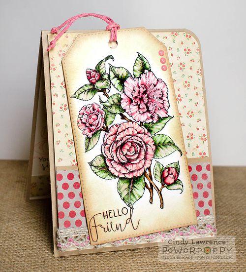 Simply-Camellias-2---OHS