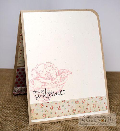 Simply-Camellias-2-Inside---OHS