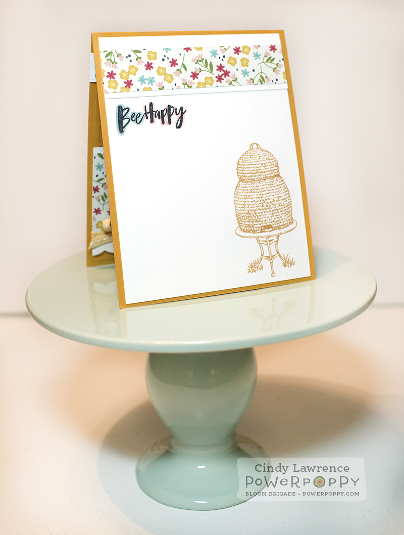 Bee Kind toile Inside - OHS