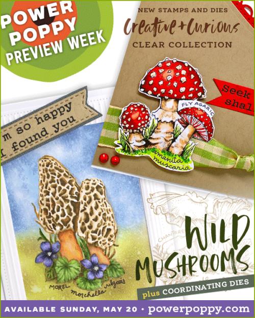 WildMushrooms_May2018Release