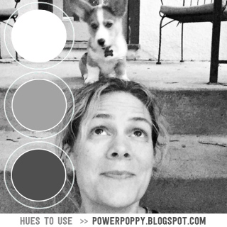 PowerPoppy-HuestoUse_July10--(1)