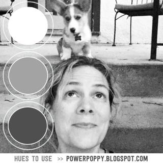 PowerPoppy-HuestoUse_July10--(1)