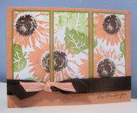 Split_sunflowers_ohs