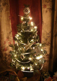 Little_christmas_tree_2_2